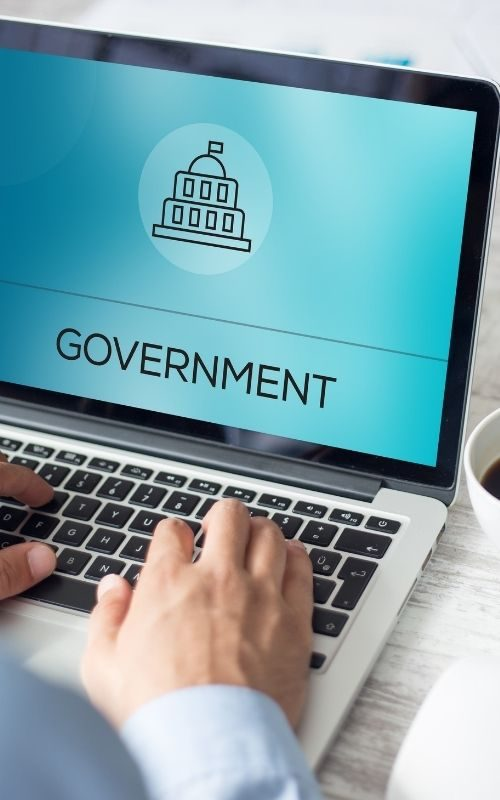 Government IT